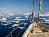 Svalbard Arctica II